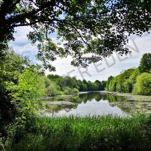 Sherwood Lake