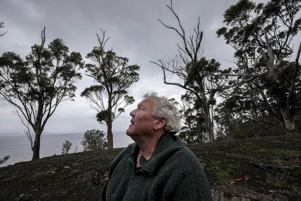As Wildfires Scorch Australia's Lands, It's Oceans Fair Even Worse